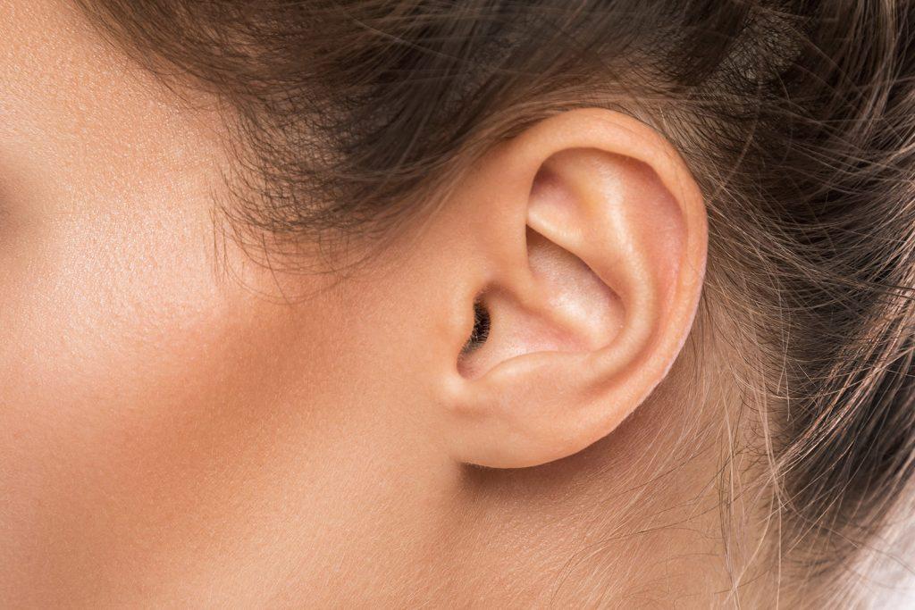 afbeelding oor